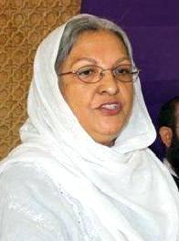 sarah safdar